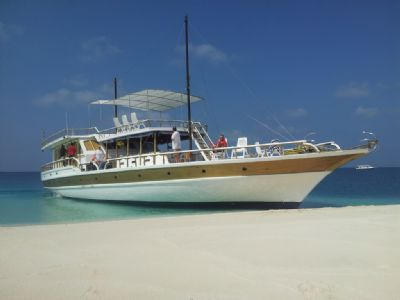 MALDIVE ISLANDS – DIVE CRUISE ON MOTORYACHT FLYING FISH